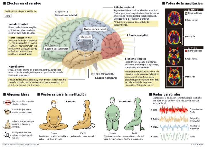 Resultado de imagen de Los procesos cerebrales