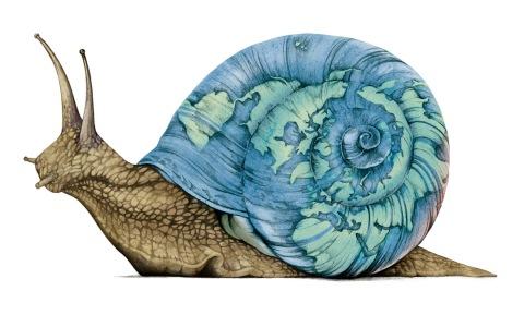 slowmovement_snail