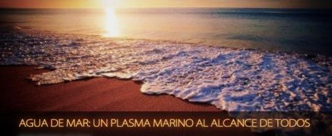 agua-de-mar-un-plasma-marino-al-alcance-de-todos