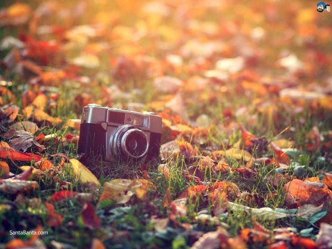 autumn-1a