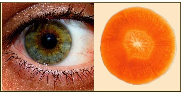 zanahoria similar al ojo