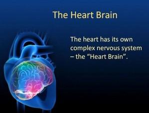 hearts-brain
