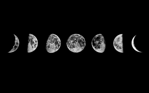 tumblr_static_moon_phases_desktop_1920x1200_wallpaper-295698